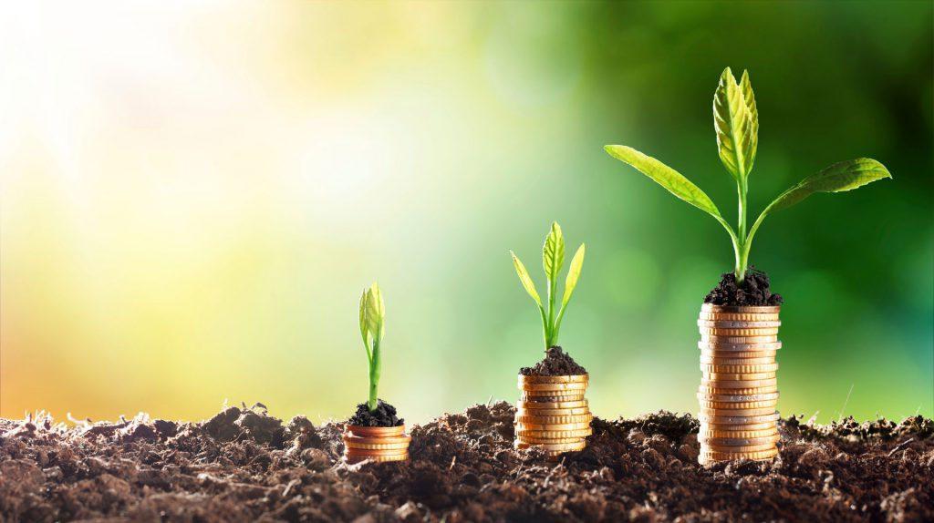 unsere 11 wichtigsten Tipps, um langfristig Vermögen aufzubauen